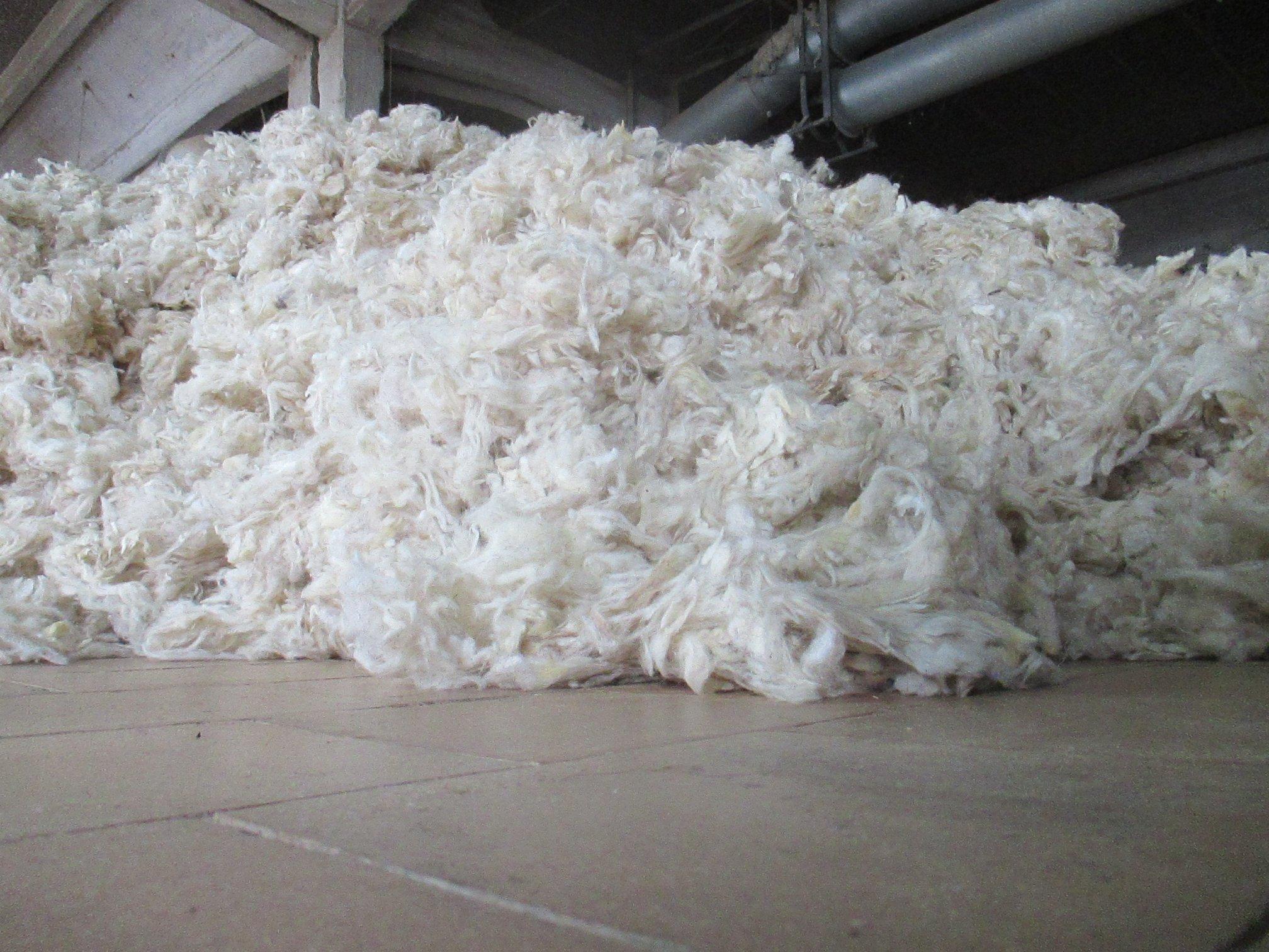 Heid de Frenay : vente de laine lavée